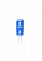 2.7V 5F EDLC Manufacturer Electric Double Layer Capacitor 3