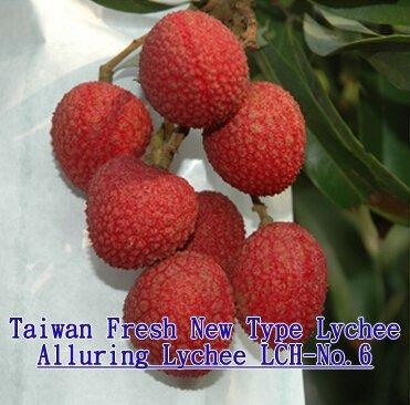 Taiwan New Type Lychee - Alluring Lychee 1