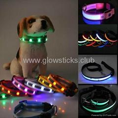 Diamond Style LED Dog Co