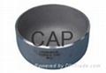 CAP 22-WP5-WP 91-WP911 ASME A403 WP