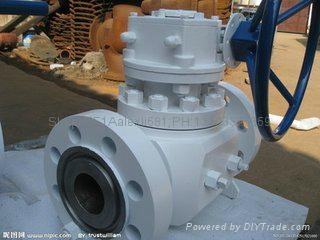 Ball valve ,Manual    electric valve,  304 ball valve。Globe valve 17