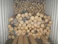 日本庫存PVC LEATHER 合成皮防水布Tarpaulin (帆布)