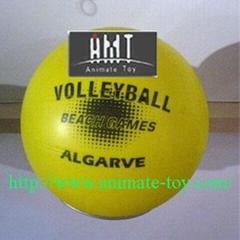 Animate Volleyball