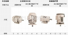 TMEIC Electric motor