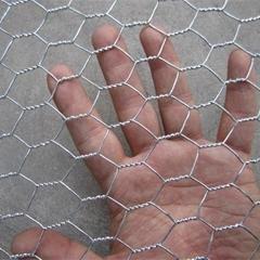 Cheap Galvanized Chicken wire netting China supplier