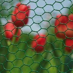 Cheap PVC coated Hexagon