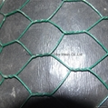 Green Plastic covered wire fencing China supplier - China -