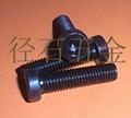 DIN7984薄头内六角螺丝 3