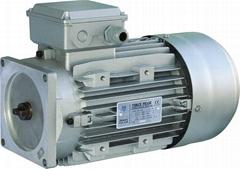 Motors for Hydraulic Car Lift