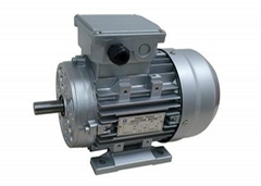 Motors for tire changer
