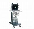BCV-30VET Veterinary Color Doppler Ultrasound  1