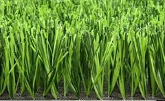 足球场专用人造草坪