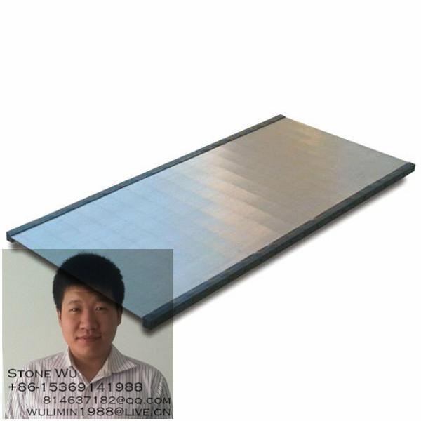 Stainless steel coal wedge sieve 2