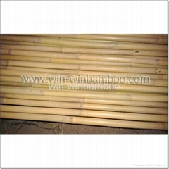 bamboo canes for farming supports or garden decorations