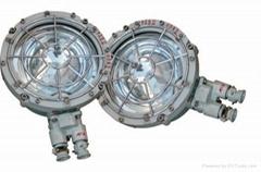 起重机防震灯具