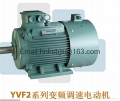 Source frequency conversion motor