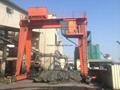 電廠污泥處理起重門機