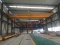 Electric Hoist Crane 7