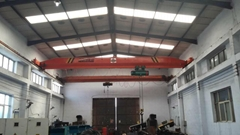 LDE bridge crane