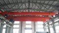 Electric Hoist Crane 9