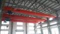 Electric Hoist Crane 11