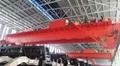 水电站桥式起重机 3
