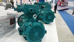Motor of Hoisting Mechanism
