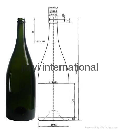 champagne bottle 1