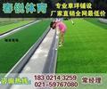 南京人造足球場施工