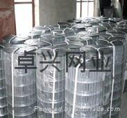 卓兴电焊网