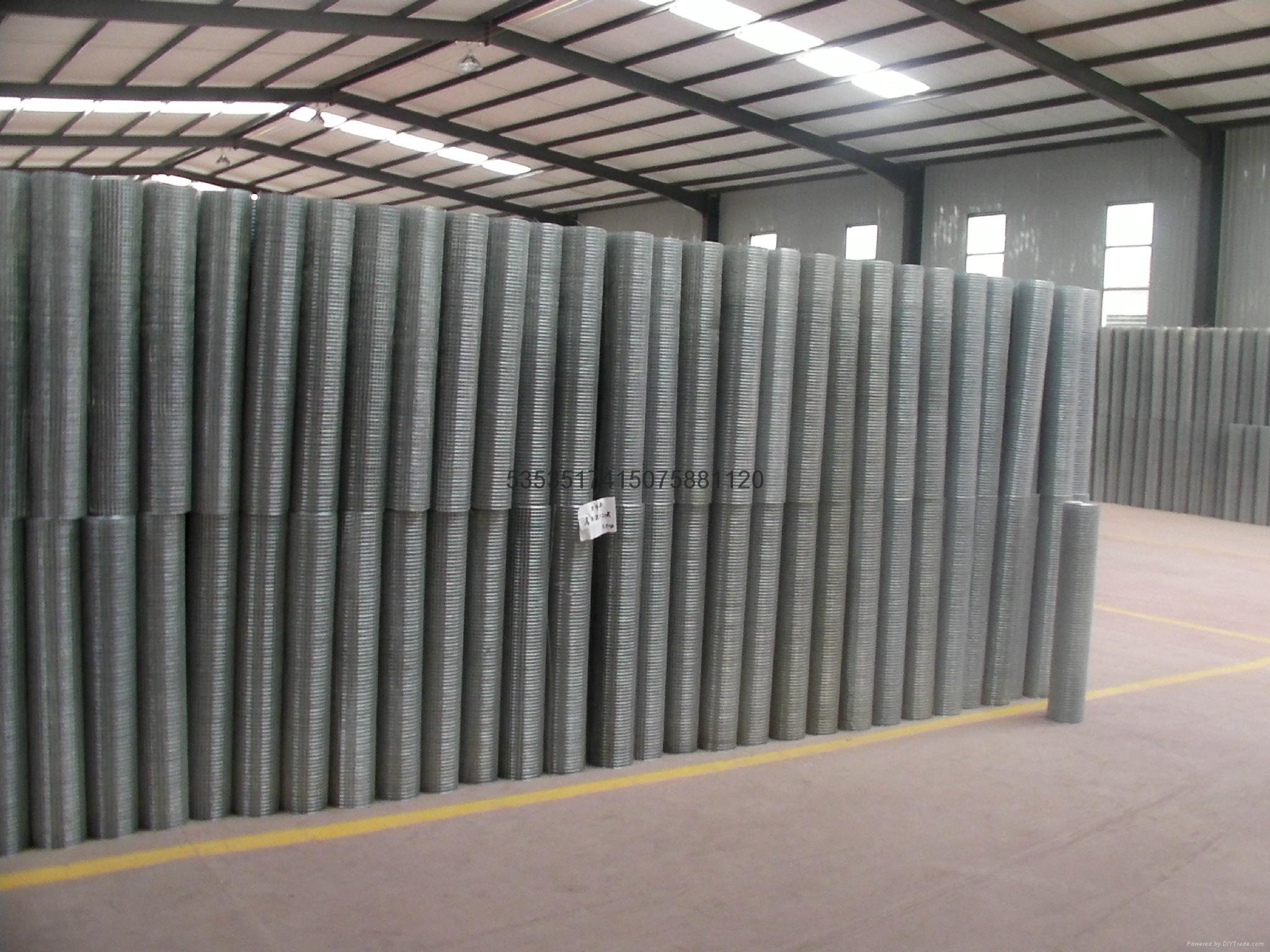 改拔丝电焊网供应商 1