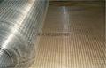 改拔丝电焊网供应商 2