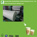 rolls of paper for paper cups