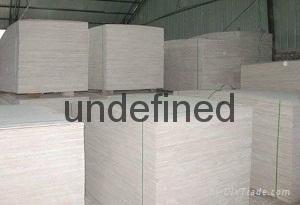 杨木素板 1