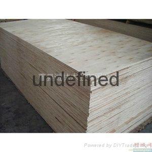 杨木素板 2