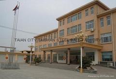 Tai'an City Taishan Steel Ball Factory