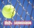 山西太原学校体育场围栏网