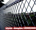 河南洛阳钢板网护栏网 5