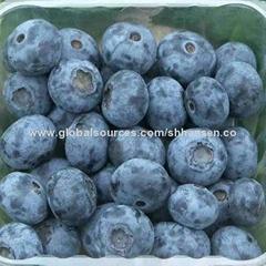 Import Agent of Frozen Wild Blueberry