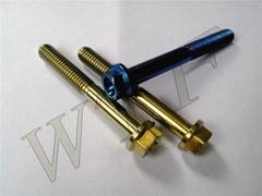 titanium hex flange bolt/screw/nut GR2 GR5