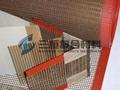 供应PTFE铁氟龙网状烘房输送带 3