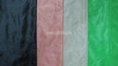15D Nylon taffeta ripstop fabric DJF-004