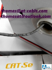 UTP CAT.5E LAN Cable 24