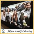 Single Side Wide Format PET backlit film