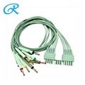 Mortara Compatible ECG Leadwire,10Lead