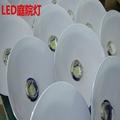 LED庭院燈 防水防爆庭院燈80W 100W 60W 2