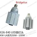 LED路燈燈泡60W