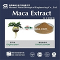 Sex product powder maca root extract