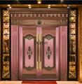 Luxury Bronze Door