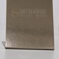 304高比和紋鍍香檳金不鏽鋼